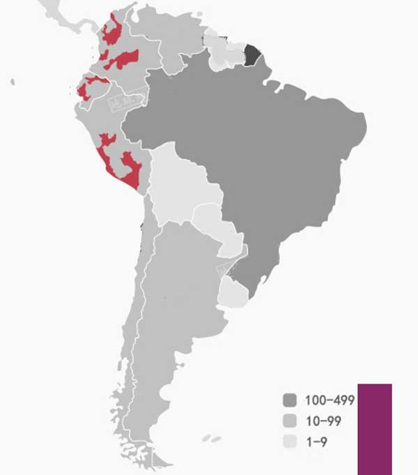 Distribución más detallada de casos en Perú